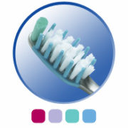 Crest Deep Clean Gum Care Toothbrush